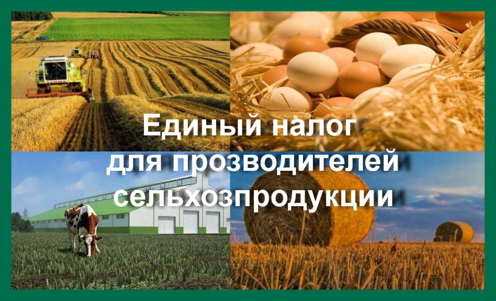 Единый налог для производителей сельхозпродукции